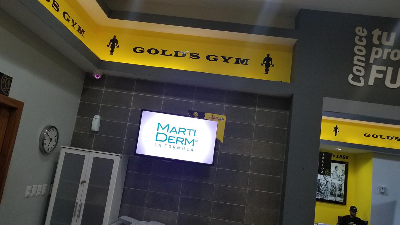 Gold's Gym Galería 360 - Recepción