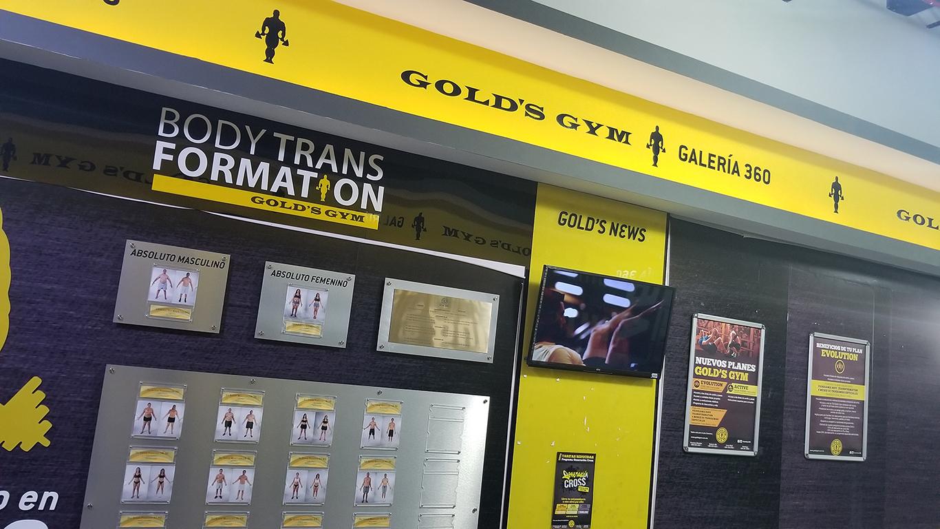 Gold's Gym Galería 360 - Wall